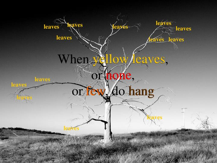 When yellow leaves or none or few do hang
