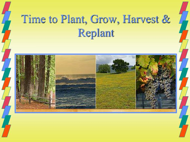 Time to Plant, Grow, Harvest & Replant