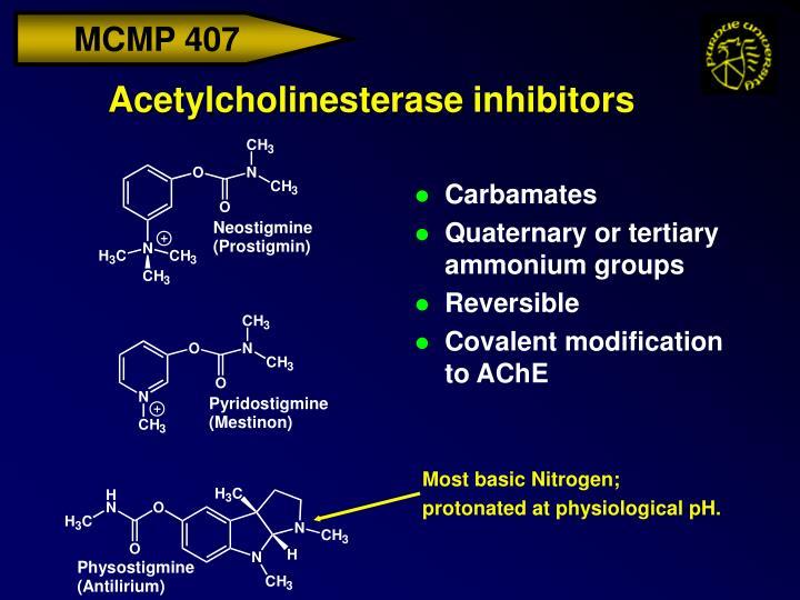 Most basic Nitrogen;
