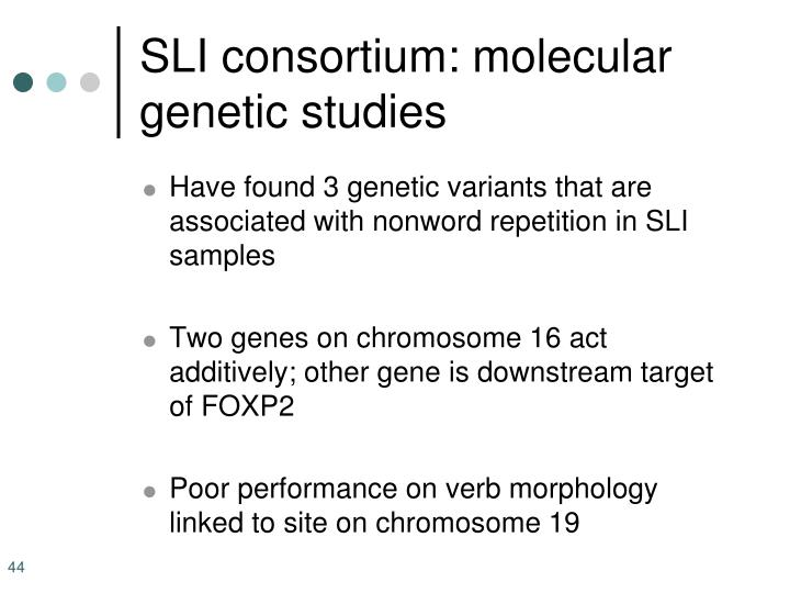 SLI consortium: molecular genetic studies