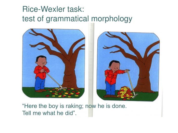 Rice-Wexler task: