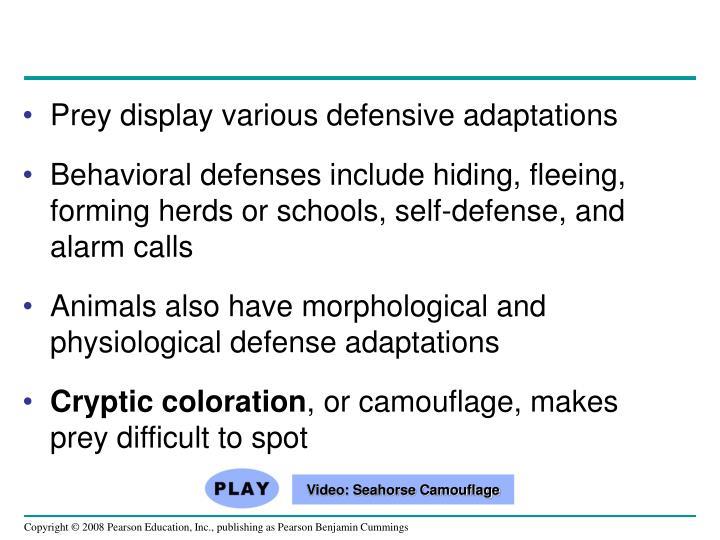 Prey display various defensive adaptations