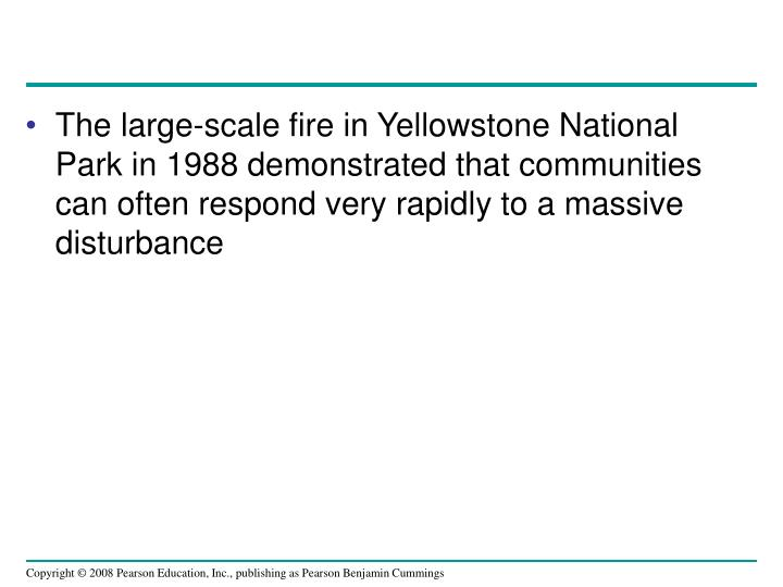 The large-scale fire in Yellowstone National Park in 1988 demonstrated that communities can often respond very rapidly to a massive disturbance