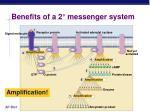 benefits of a 2 messenger system