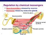 regulation by chemical messengers
