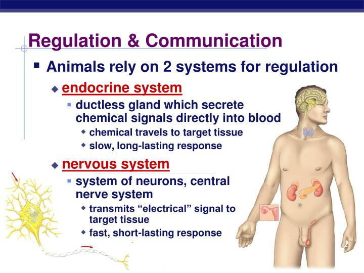 Regulation communication