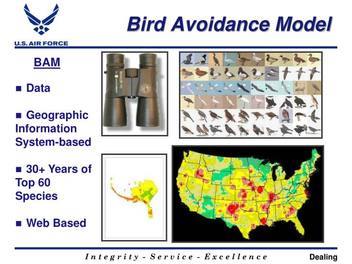 Bird Avoidance Model
