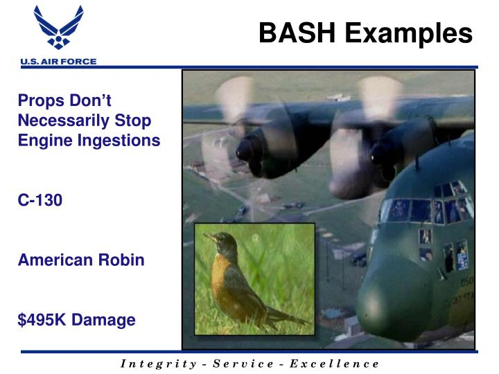 BASH Examples