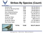 strikes by species count