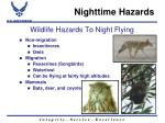 wildlife hazards to night flying