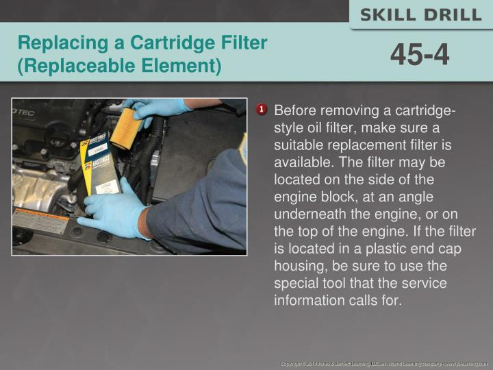 Replacing a Cartridge Filter (Replaceable Element)