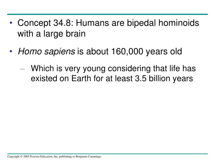 Concept 34.8: Humans are bipedal hominoids with a large brain