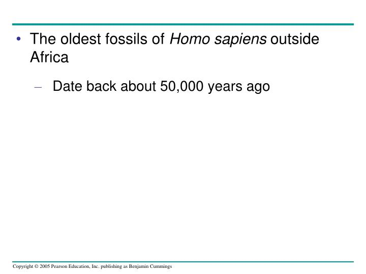 The oldest fossils of