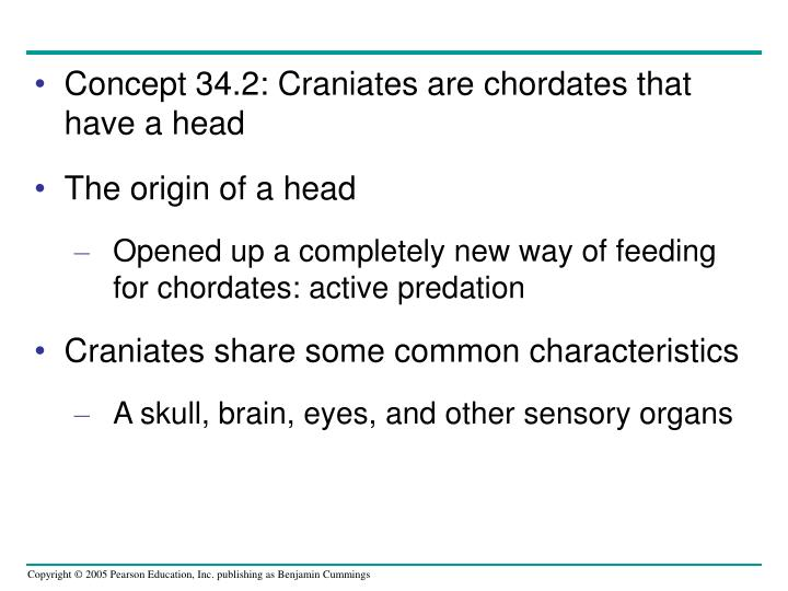Concept 34.2: Craniates are chordates that have a head