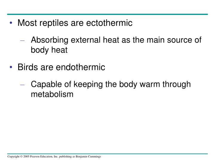 Most reptiles are ectothermic