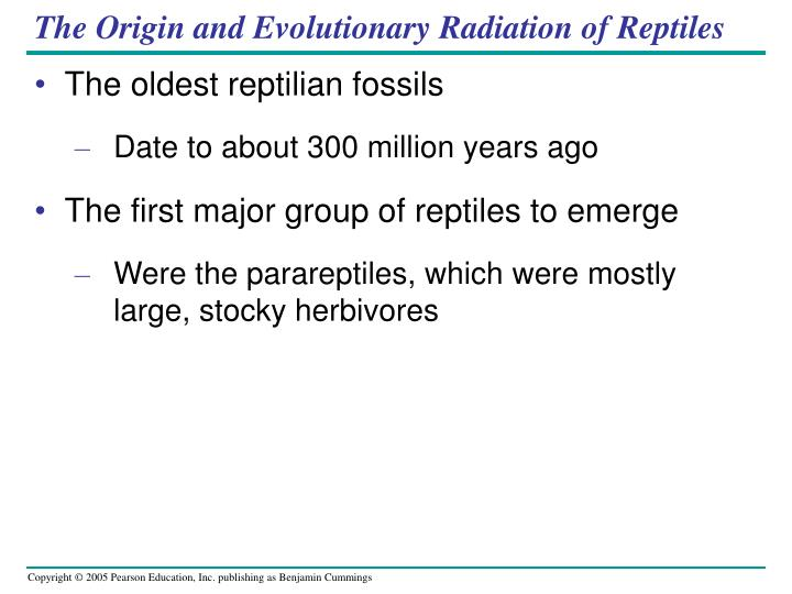 The Origin and Evolutionary Radiation of Reptiles