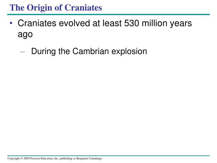 The Origin of Craniates