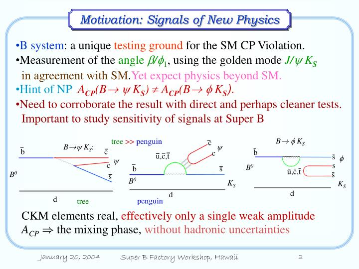 Motivation signals of new physics