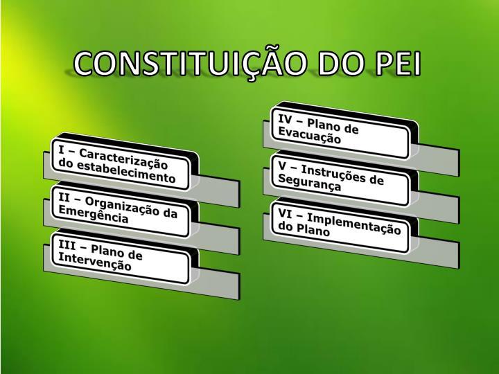 CONSTITUIÇÃO DO PEI