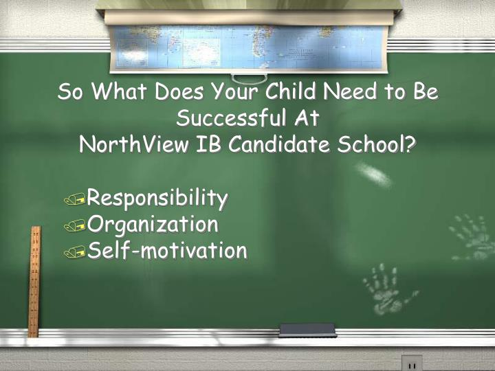 So What Does Your Child Need to Be Successful At