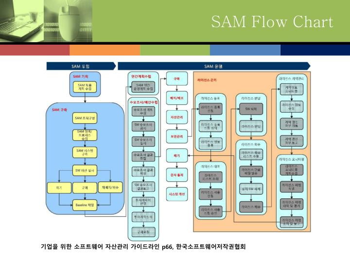 SAM Flow Chart