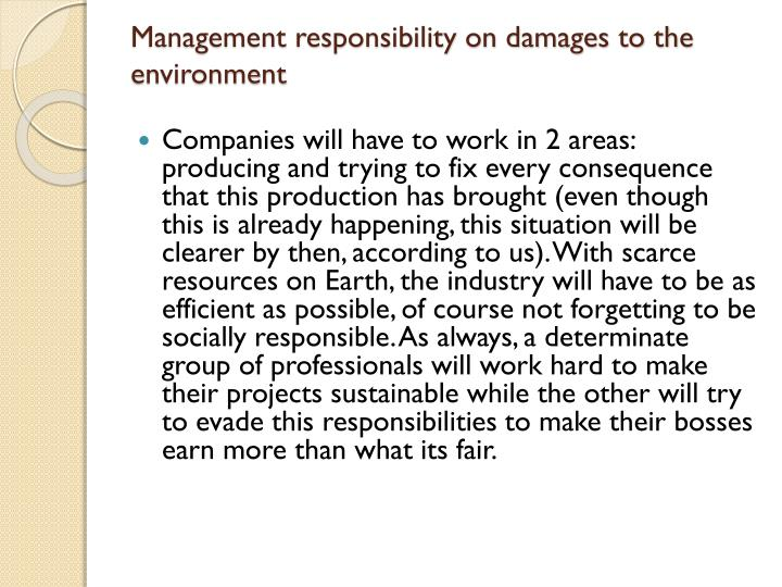 Management responsibility on damages to the environment