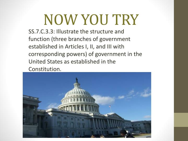 SS.7.C.3.3: Illustrate the structure and function (three branches of government established in Articles I, II, and III with corresponding powers) of government in the United States as established in the Constitution.