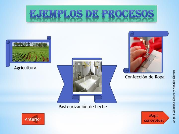 Ejemplos de Procesos