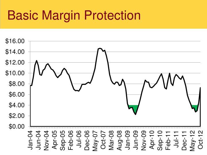 Basic Margin Protection