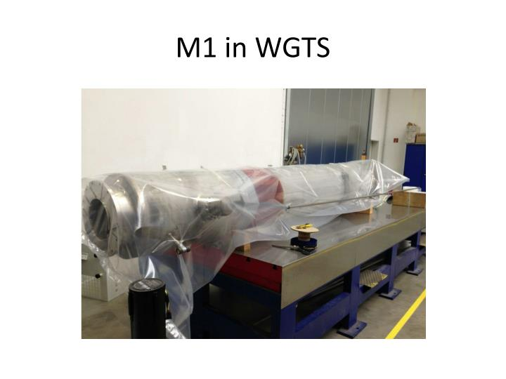 M1 in WGTS