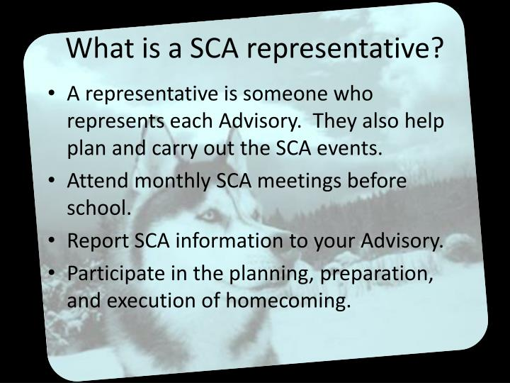 What is a SCA representative?