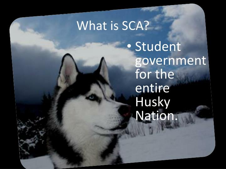 What is SCA?