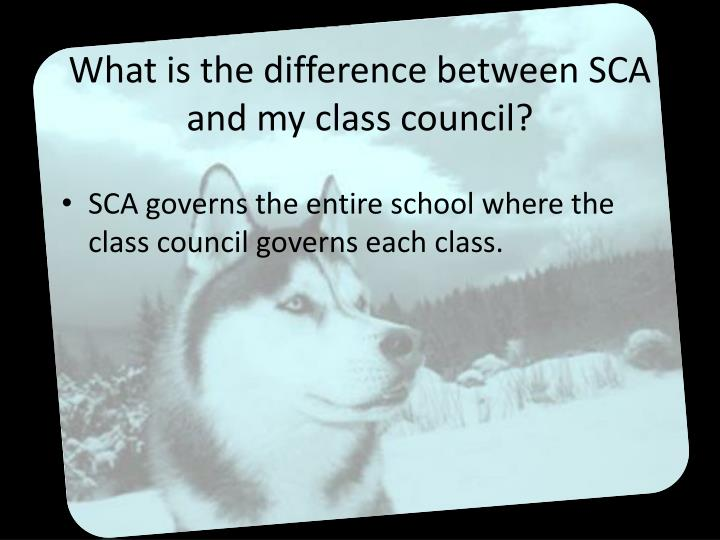 What is the difference between sca and my class council