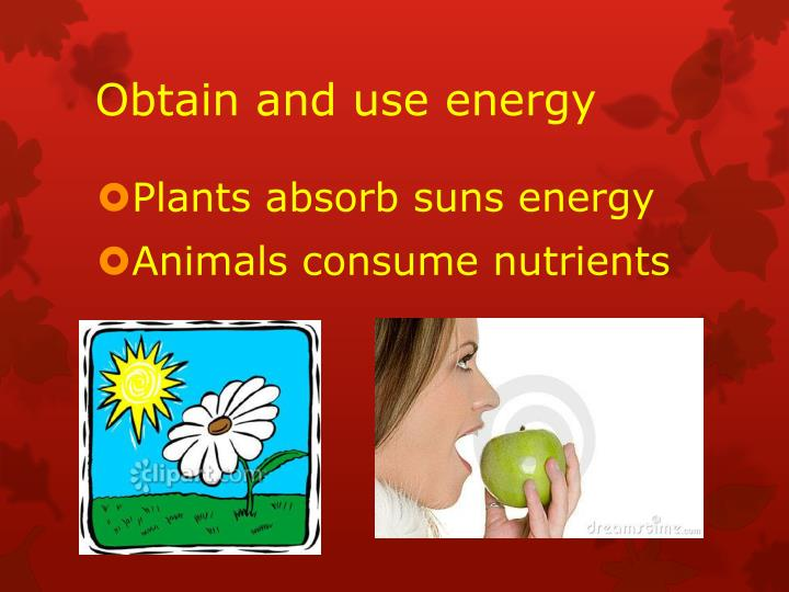 Obtain and use energy