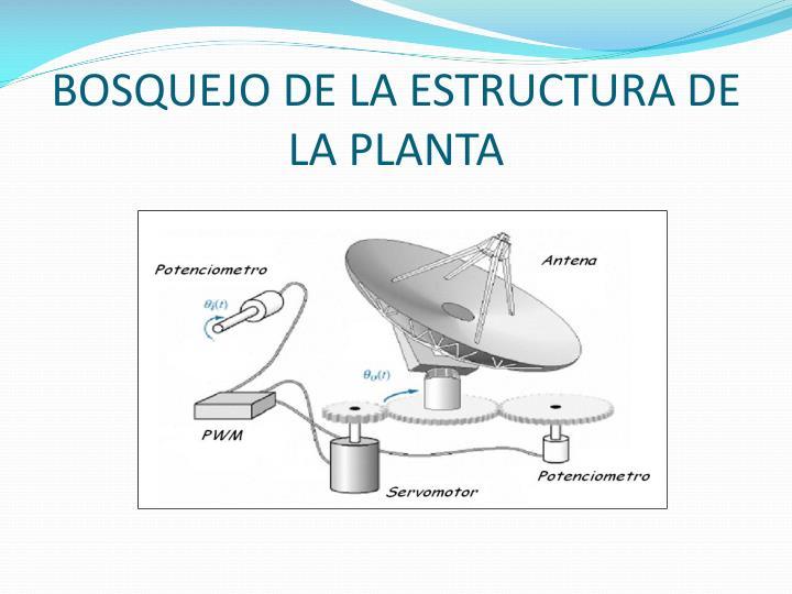 BOSQUEJO DE LA ESTRUCTURA DE LA PLANTA