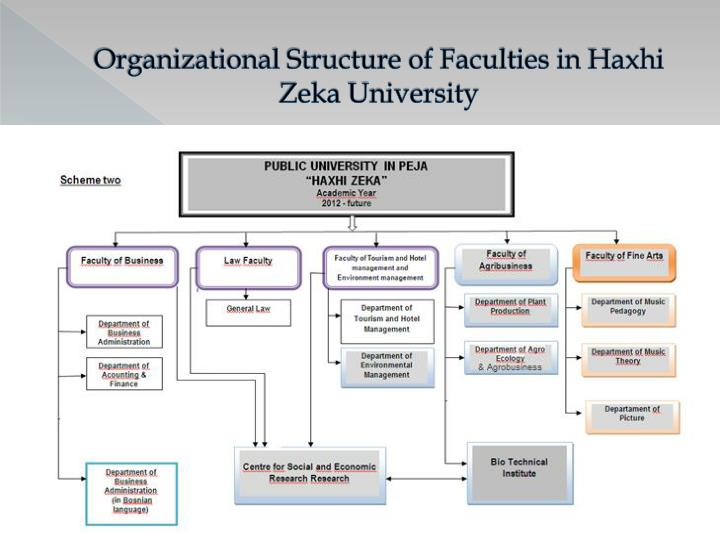 Organizational Structure of
