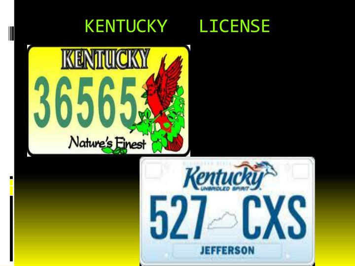 KENTUCKY   LICENSE