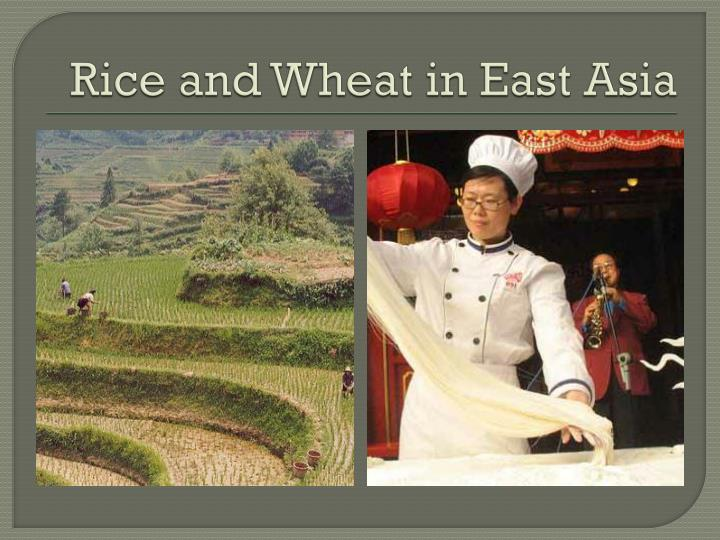 Rice and Wheat in East Asia