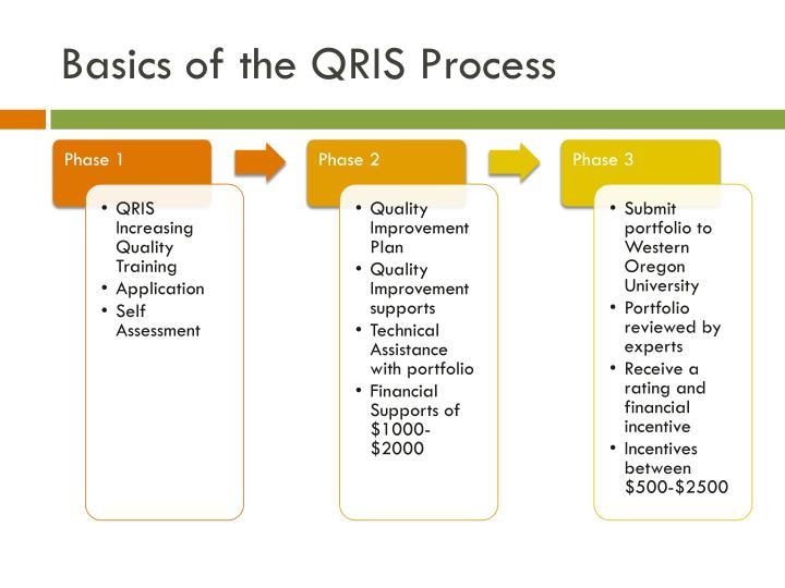 Basics of the QRIS Process
