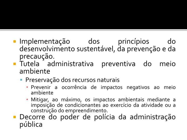 Implementação dos princípios do desenvolvimento sustentável, da prevenção e da precaução.
