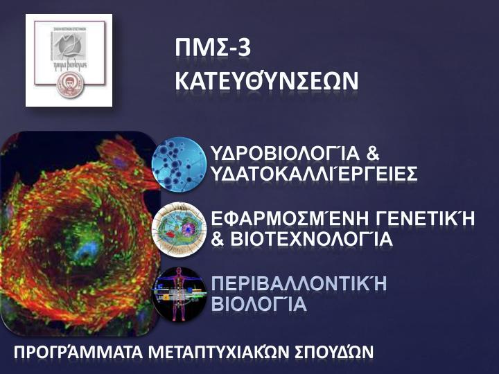 ΠΜΣ-3