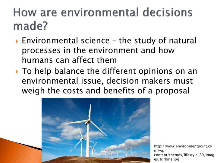 How are environmental decisions made?