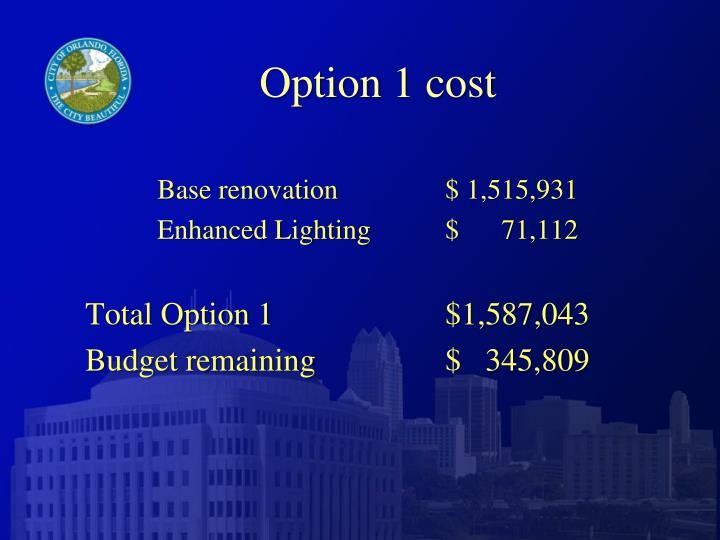 Option 1 cost