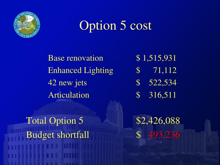 Option 5 cost