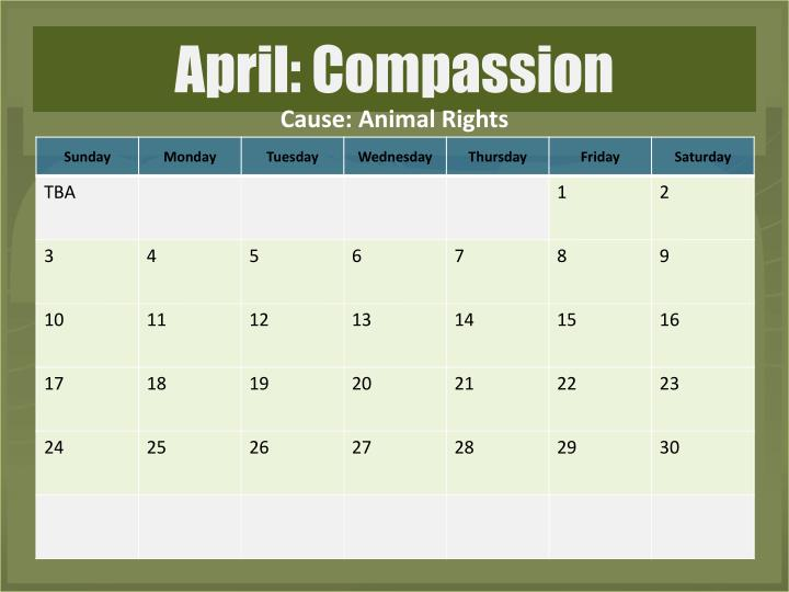 Cause: Animal Rights