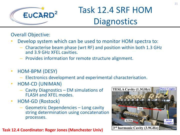 Task 12.4 SRF HOM Diagnostics