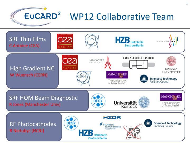 WP12 Collaborative Team