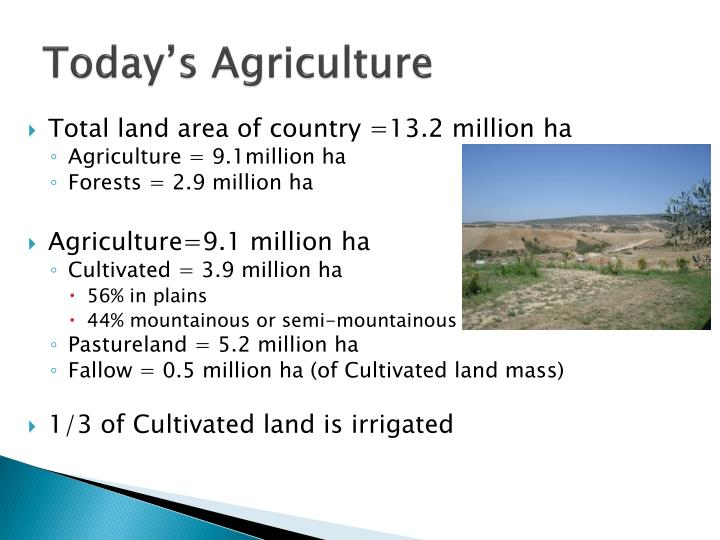 Today's Agriculture