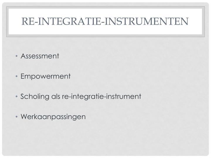 Re-integratie-instrumenten