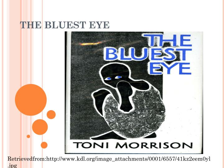 toni morissons the bluest eye essay